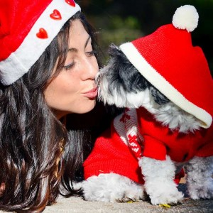 A Christmas gift guide for dog lovers