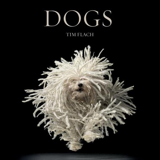 Book Dogs by Tim Flach