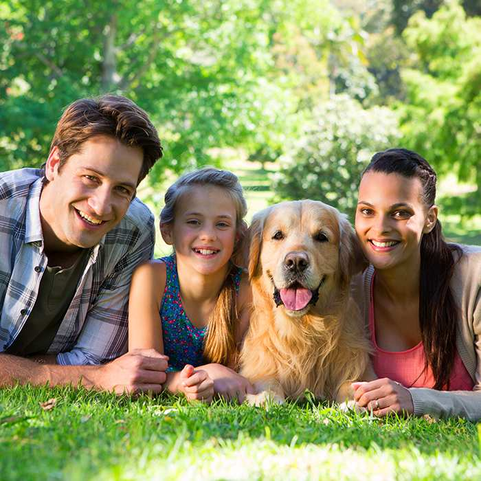 happy-family-with-their-beautiful-golden-retriever-lying-in-grass