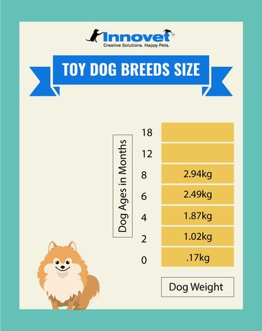 Dog Growth Chart - Toy Size Dogs, Examples of the Toy Breed include: Chihuahua, Italian Greyhound, English Toy Spaniel, Toy Poodle, Karst Shepherd, Beaglier, Russian Tsvetnaya Bolonka