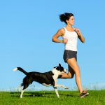 The importance of exercise for adult dogs